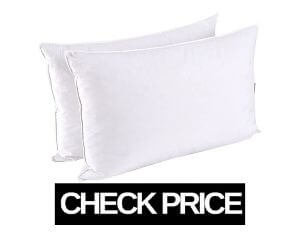 PUREDown Best Bed Pillows